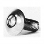 Pillow Block Screw